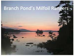 Branch Lake Milfoil Rangers
