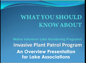 What You Should Know About IPP - Presentation